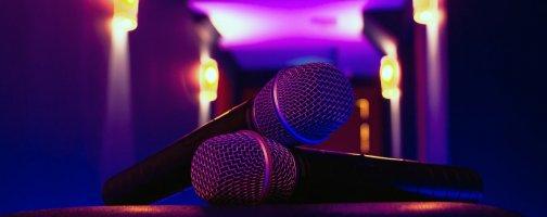 микрофон для домашней караоке-системы
