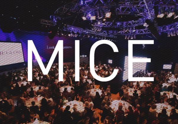 mice-675x471